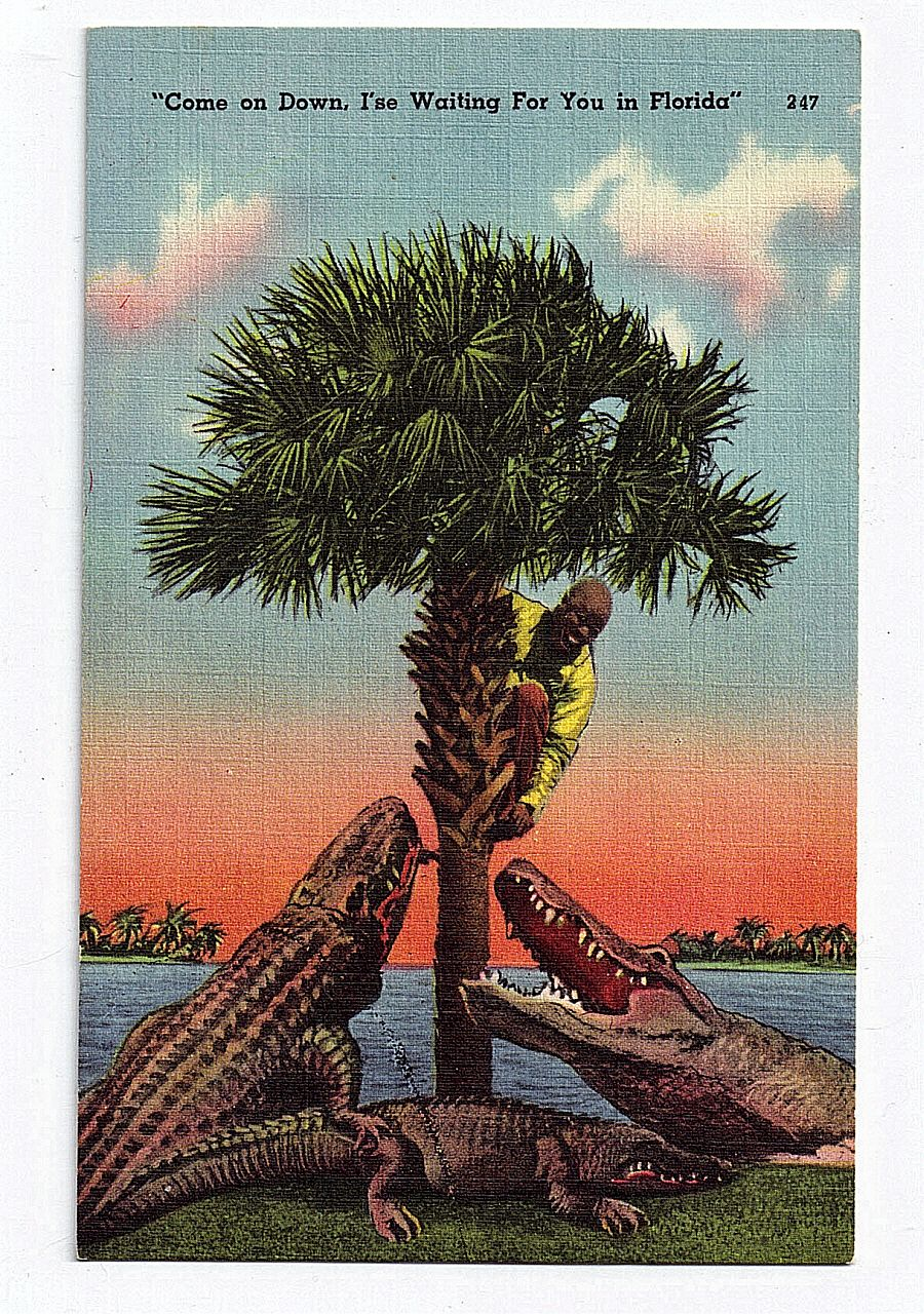 Black Americana Linen Postcard Come On Down I'se Waiting For You In Florida