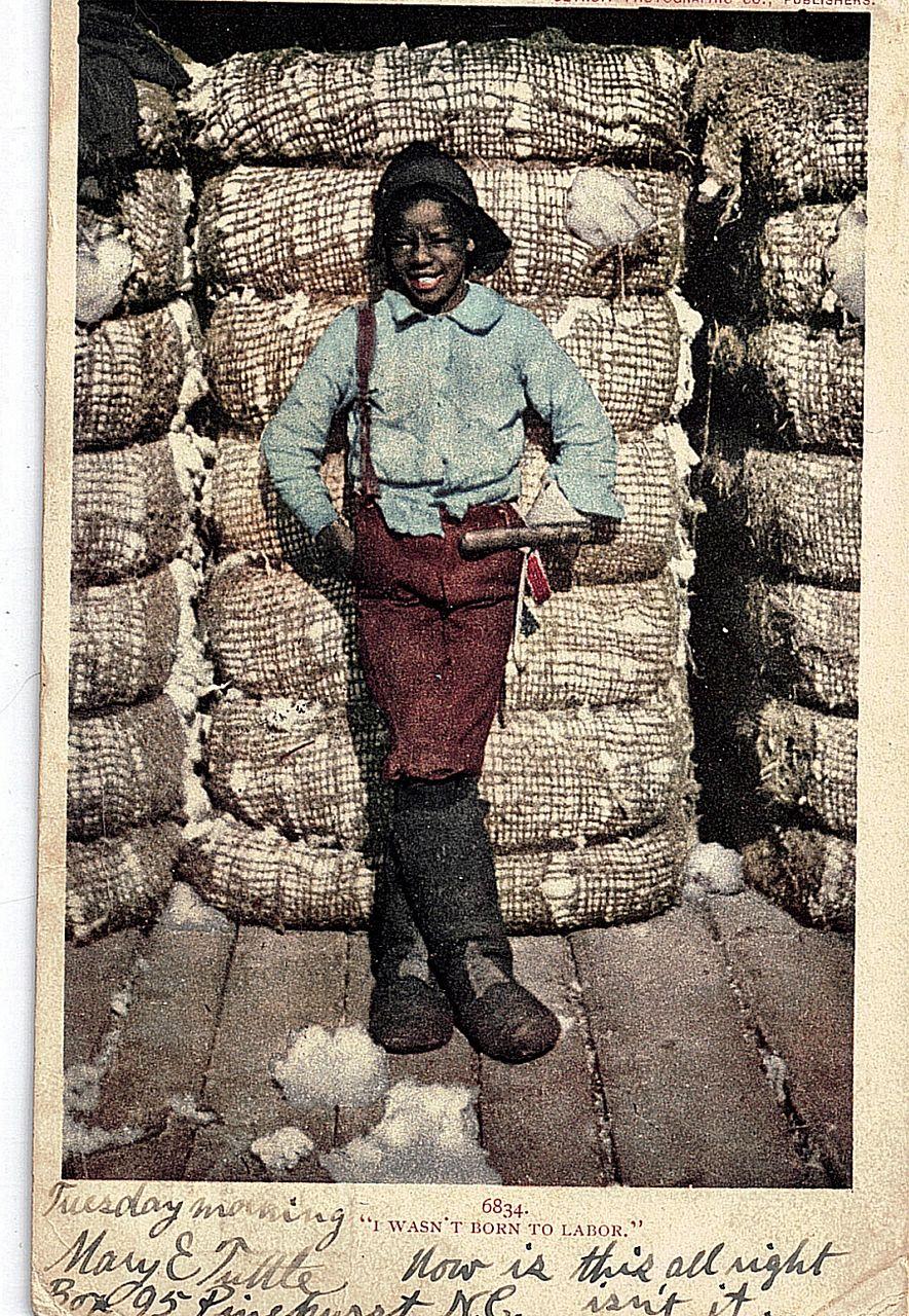 1906 Black Americana Real Life Postcard I Wasn't Born To Labor