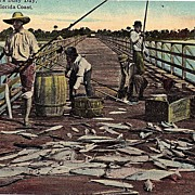 Black Americana Postcard The Fishermen's Busy Day Scene On The Florida Coast