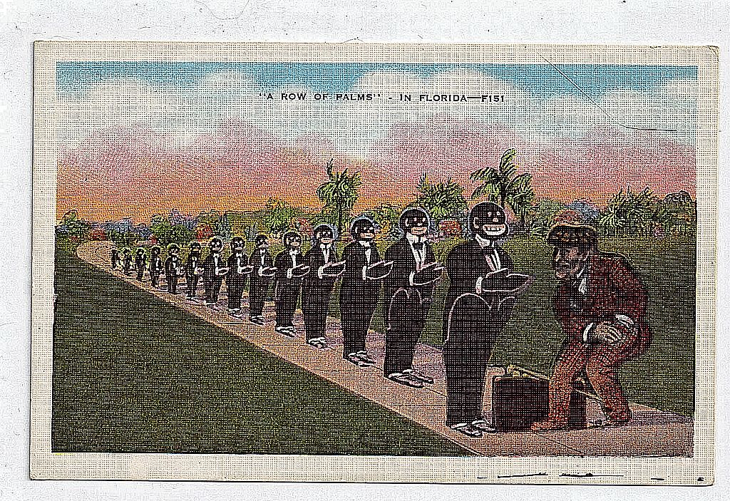 Black Americana  Linen Postcard A Row Of Palms---In Florida