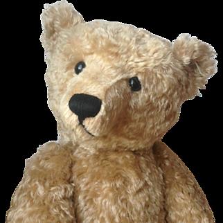 """Large Steiff Teddy Bear Replica 1909 25,5"""" (65cm) tall with growler!"""