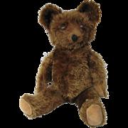 1930's Knickerbocker Brown Mohair Teddy Bear