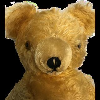 "1930's 20"" Gund Teddy Bear From Original Owner"