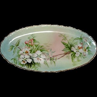 Very RARE Limoges Porcelain Tray Signed E H Morse