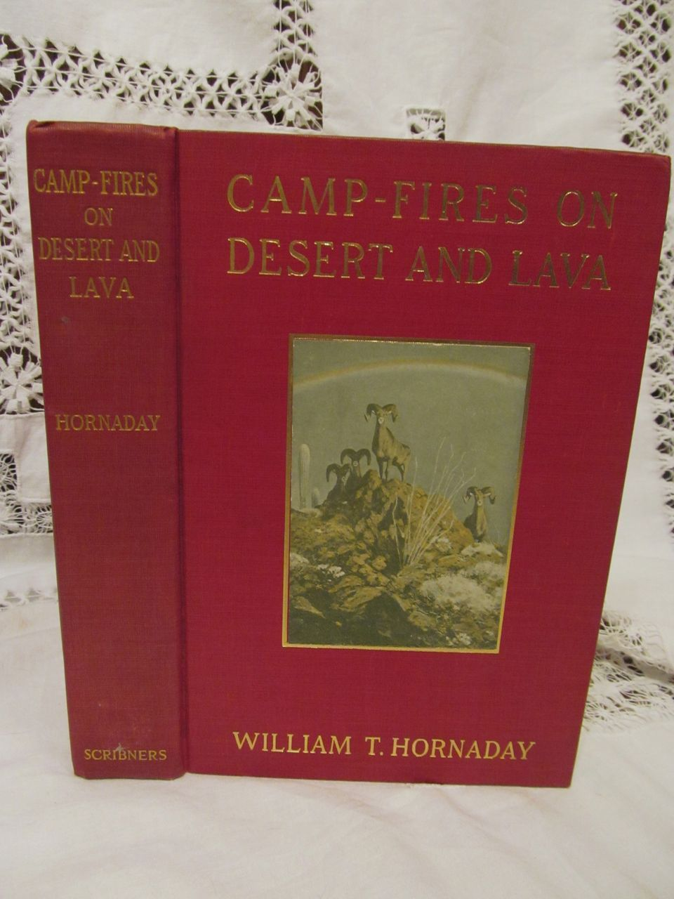1908 Camp-Fires on Desert and Lava by William T Hornaday,Illustrated, Publ by Charles Scribner's Sons