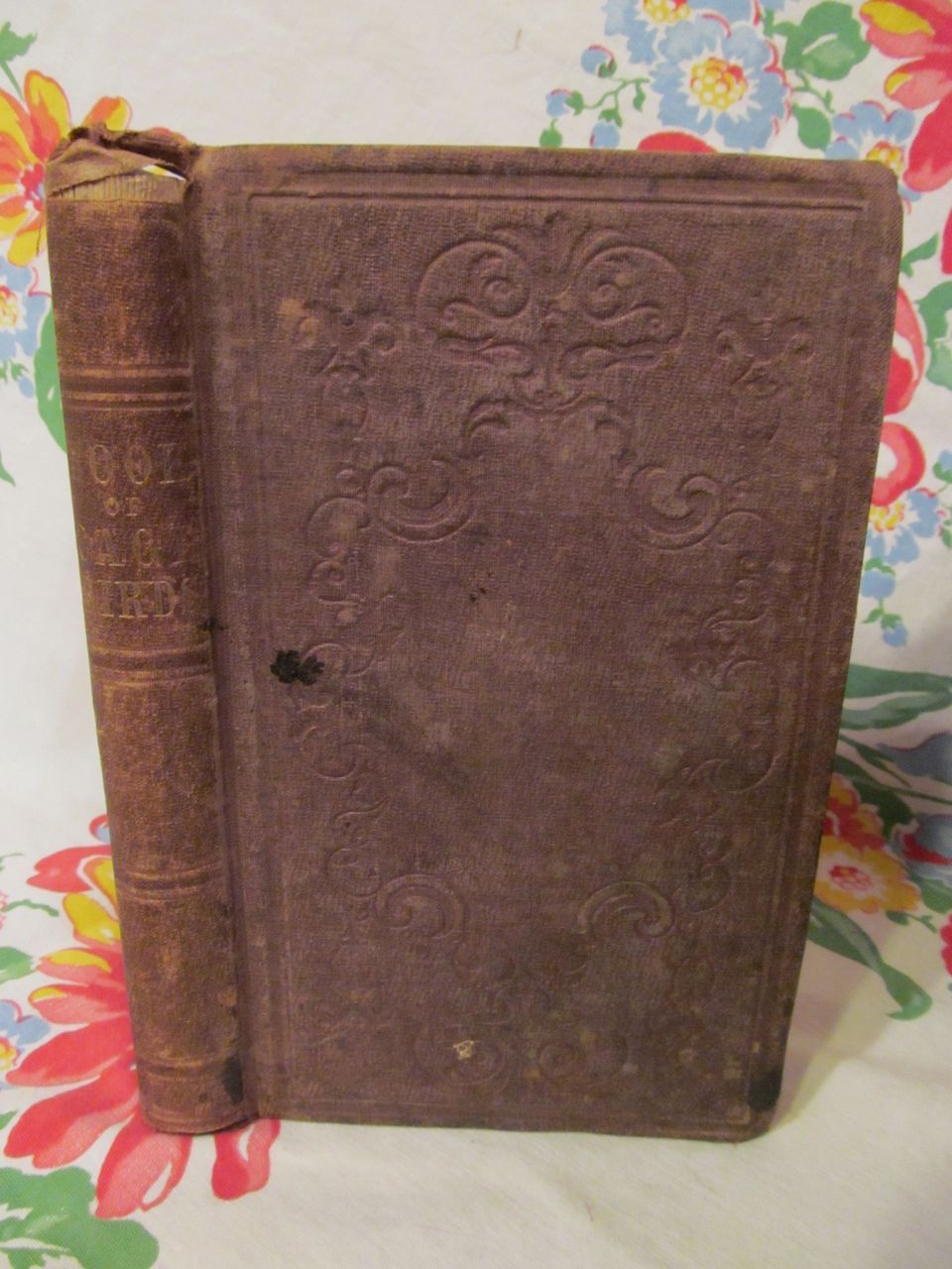 1843 The Book of Cage Birds by Henry B Hirst, Publ Bernard Duke