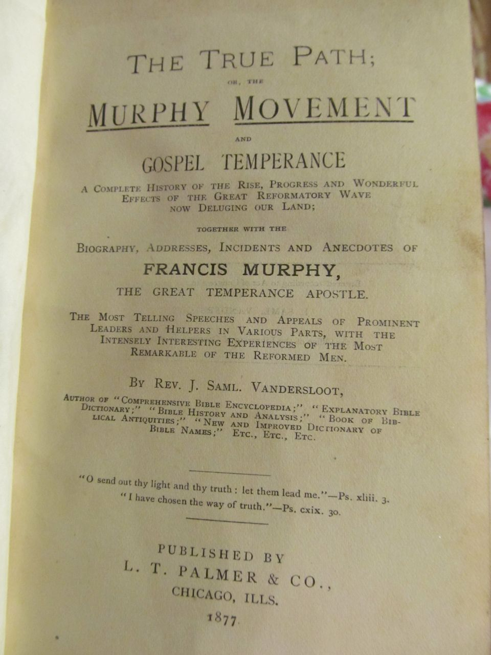 1877 The True Path of The Murphy Movement and Gospel Temperance by Rev J Saml Vandersloot, Publ L T Palmer & Co
