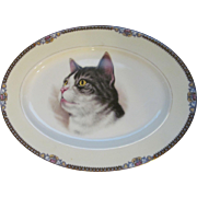 Noritake Tabby Cat Kitty Platter