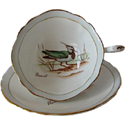 "PARAGON ""Peewit"" British Birds Series Tea Cup and Saucer"