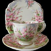 Vintage Royal Albert Blossom Time Trio