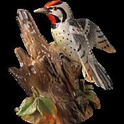 Vintage Woodpecker Figurine - Shafford Bird Collection