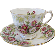 """Early Royal Albert """"Wild Rose"""" Patterned Tea Cup & Saucer"""