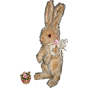 "STEIFF BUNNY - With Button - 9"" - Tan Mohair w/ Gold Eyes & Pink Nose - Vintage!! - So Cute!!"