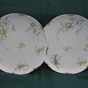 "Pair Haviland Limoges  7 1/2"" Plates"