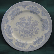 "English Transferware Plate ""Asiatic Pheasant"""