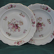 "A Pair of Schumann Arzberg Germany Rose Decorated 10"" Plates"