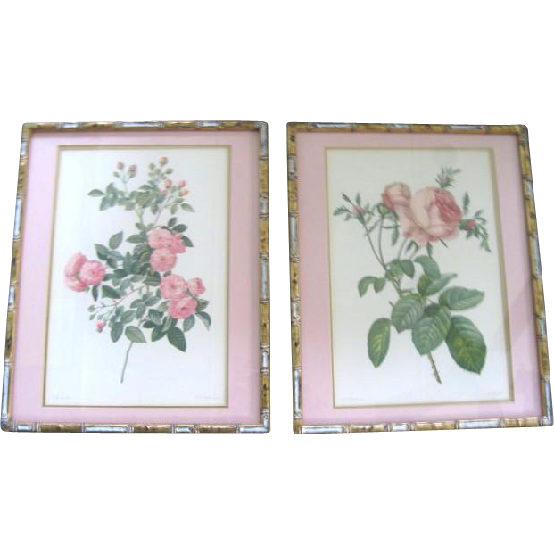 A Pair of Framed Pink Rose Prints ~ From Original Work of P.J. Redoute ~ 1950s