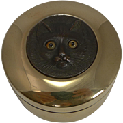 Antique Brass Box - Cat With Glass Eyes c.1890