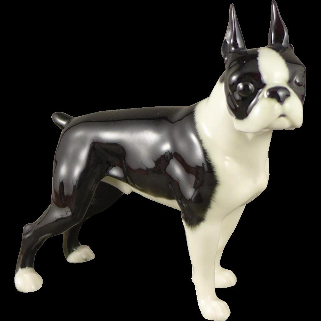 Hutschenreuther Boston Terrier Figurine, Vintage Porcelain Dog 1970's