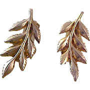 Captivating  Textured Gold Plate Earrings