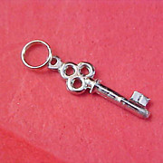Silver Plate SKELETON KEY Old Charm
