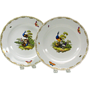 2 early decorated PEACOCK plates Meissen second quality mark