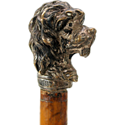 Antique Child's or miniature walking stick cane with plated Dog head handle Tom on collar