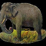 Vintage Raphael Tuck chromolitho rocking card of an Elephant