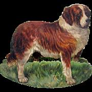 Early Raphael Tuck chromolitho rocking card of a St Bernard dog