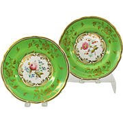 Pair of 1860's Paris porcelain botanical cabinet plates with flowers hand painted