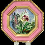 19th Century Copeland porcelain botanical cabinet plate artist signed