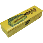 Unusual vintage celluloid box with a feather fan-glove box sized