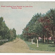 Road Leading from Geneva to Lake Erie Geneva Ohio OH Postcard