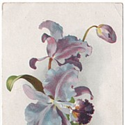 Tuck Happy Birthday Purple and Blue Orchid Early Postcard