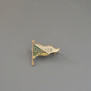 Oswego Possibly NY New York Pennant Green and White Vintage Lapel Pin