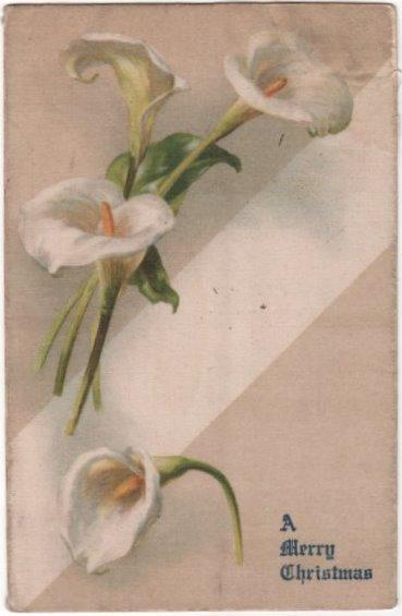 Silk Postcard A Merry Christmas White Calla Lilies Undivided Back