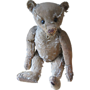 "Antique Steiff 16"" Bear, Loved Birdie"