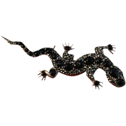 """3"""" inch Sterling Silver & Onyx Lizard Brooch"""