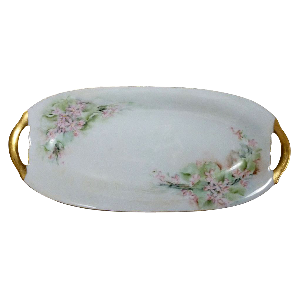 Charming Off White  Hand Painted Flower Celery Dish