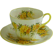 Royal Albert Blossom Time Series Laburnum Tea Cup