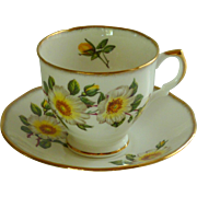 Vintage Salisbury Bone China  English Tea Cup