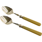 Set of Pyralin Celluloid Teaspoons with Sterling Silver