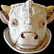 Victorian Bulls Head Cheese Dish