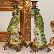 Pair of Porcelain Parrot Candlesticks
