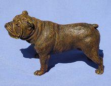Vienna Bronze Bulldog Bergman
