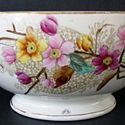 Bowl Transferware Aesthetic Polychrome Staffordshire