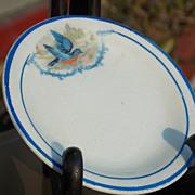 Blue Bird Plates