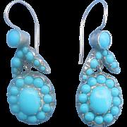 Beautiful Victorian Earrings