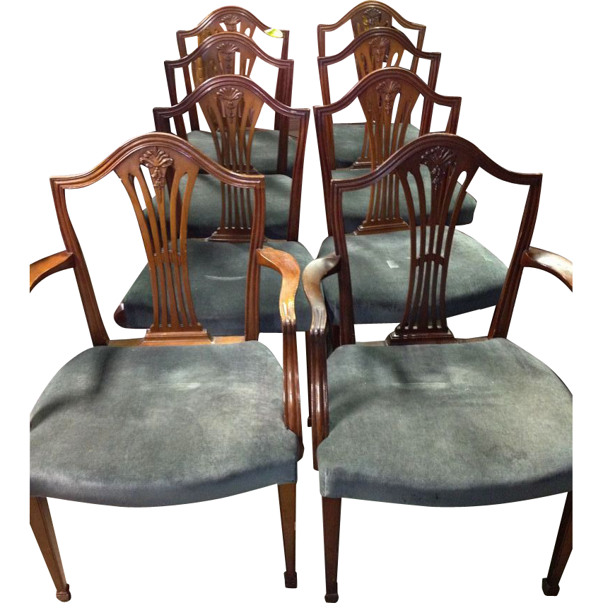 Mahogany Dining Chairs, Federal Hepplewhite Style, Set Of 8 : Roberts  Antiques   Ruby Lane