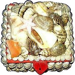 Seashell Trinket Box ~ 1970's